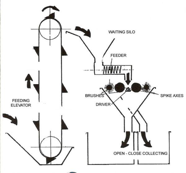 Pistachio Sorting process
